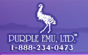 Purple Emu